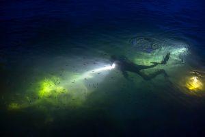 night dive 2